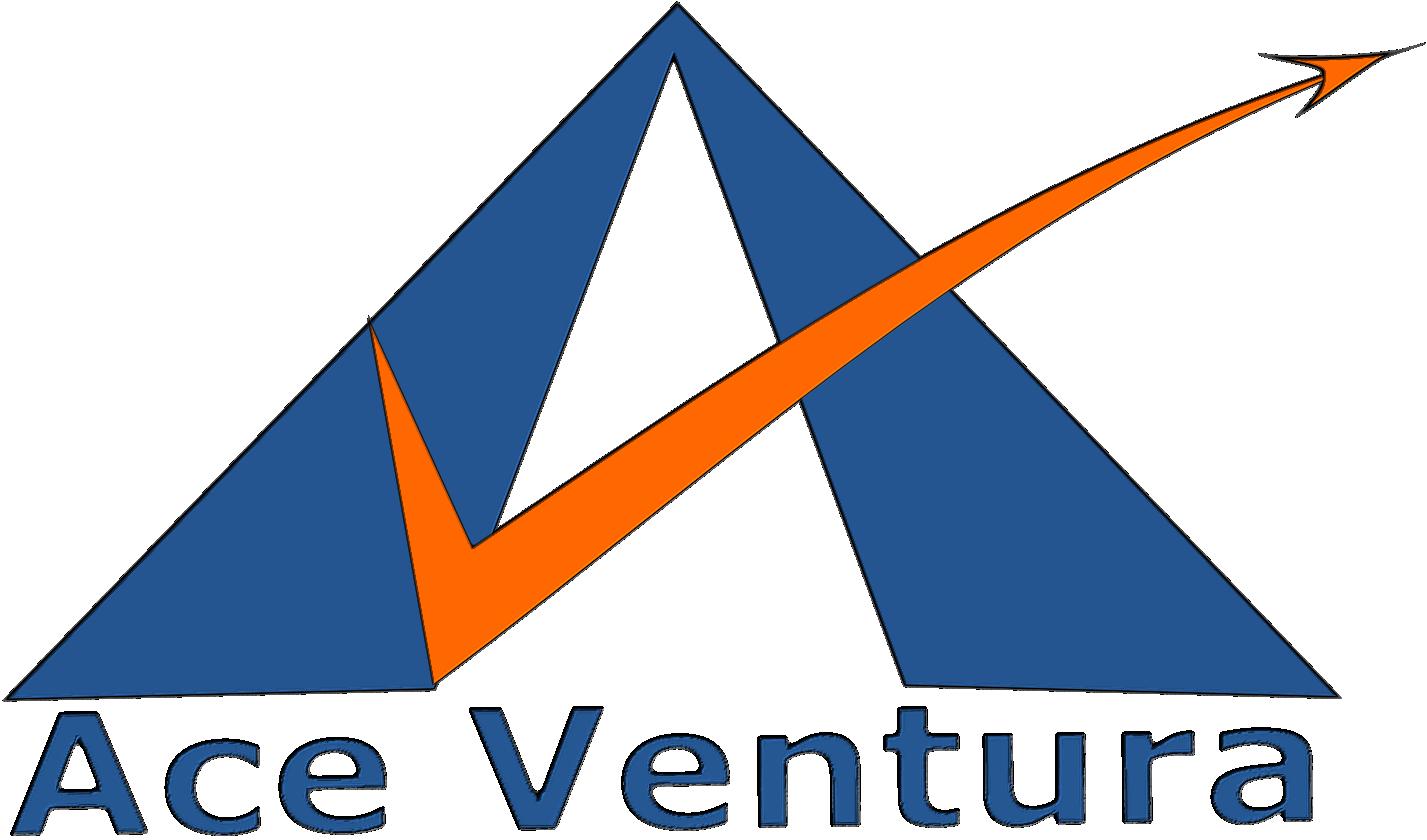 Ace Ventura Services